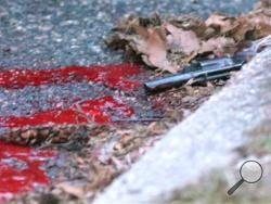 A revolver lies in a pool of blood in the street next to Heriberto Pagan's car, in the Rosebank section of the Staten Island borough of New York, Friday, March 28, 2014. Police say that the 86-year-old Pagan shot his grandson in the head, wounding him, before killing the man's girlfriend. He got in his car and drove a couple blocks from the murder before taking his own life. Police say the motive for the murder/suicide is unclear. (AP Photo/Staten Island Advance, Bill Lyons)