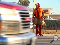 "Las Vegas police officer Mike Lemley, dressed in a turkey costume, crosses the street at the intersection of Balzar Avenue and Martin Luther King Boulevard in Las Vegas, Tuesday, Nov. 26, 2013. The giant turkey is roving crosswalks in Las Vegas to squawk on drivers who don't yield to pedestrians. It's the fifth annual appearance of the safety mascot dubbed ""Butterball One."" Police waiting to the sides of the crosswalks are slapping drivers who don't stop with fines starting at $191. (AP Photo)"
