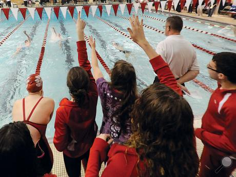 The members of the Bloomsburg swim teams stand on the pool deck cheering on teammate Jacob Ryan, second lane from left, as he swims in the final heat of the 100-yard backstroke during Thursday night's District 4 swim meet in Williamsport.
