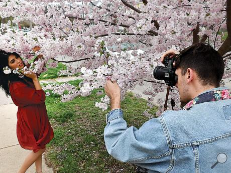 Freelance photographer Cameron Stanley, right, of Bloomsburg, takes advantage of the cherry blossoms along Market Street Tuesday afternoon to take pictures of Liz Torres of Bloomsburg. Stanley can't wait for spring because it is his favorite time of year to take pictures.