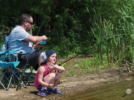 Gabby Welsh, 5, of Limeridge watches a family of ducks while her father, Brandon Welsh, replaces bait on a fishing rod at Briar Creek Lake in Berwick on Sunday afternoon.