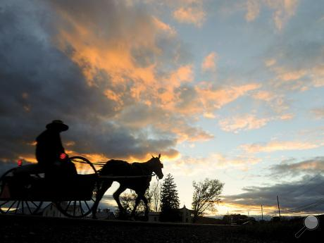 An Amish farmer rides in a horse-drawn cart west along Route 254 in Washingtonville on Thursday evening as the sun sets.