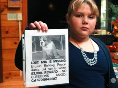 Janessa Bobersky, 9, holds a photo of her missing English bulldog, Mia.