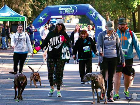 Dogs and their owners head down Fort McClure Boulevard in Bloomsburg at the start of the Squirrel Chaser 5k Run/Walk Sunday morning. The race was hosted by Bloomsburg Veterinary Hospital and benefits the Animal Resource Center.