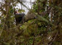 This wanted man climbed a tree in Seattle early Friday, March 1 apparently to elude police. He finally came down from his perch after several hours. (AP Photo/ The Seattle Times - Mike Siegel)