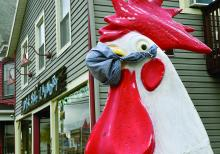 A chicken statue next to Dockside Laundry in Nescopeck dons a mask. The state has recommended the use of a mask in public areas like the grocery store and pharmacy. (Press Enterprise/Jimmy May)